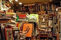 librairie-4.jpg